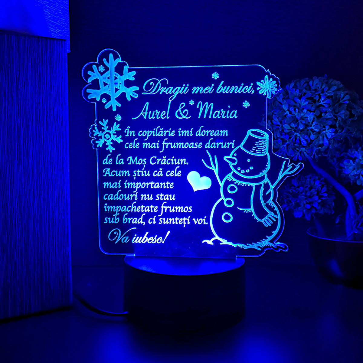 Cadou personalizat de Craciun pentru bunici - LED multicolor